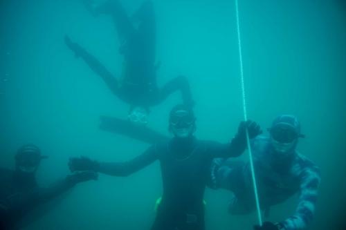 unterwasserwelten019