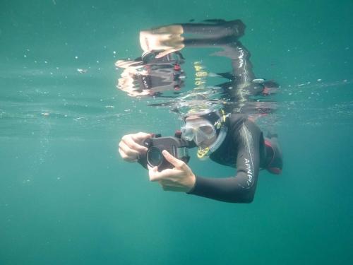 unterwasserwelten035