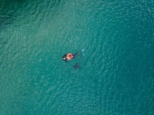 unterwasserwelten030